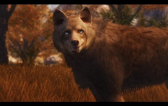Волки от Mari