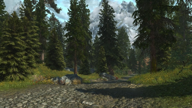 Лес в окружности Вайтрана !