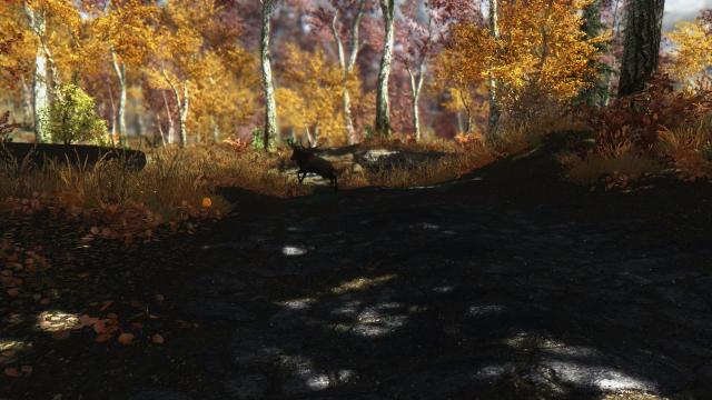 Осень в Скайриме