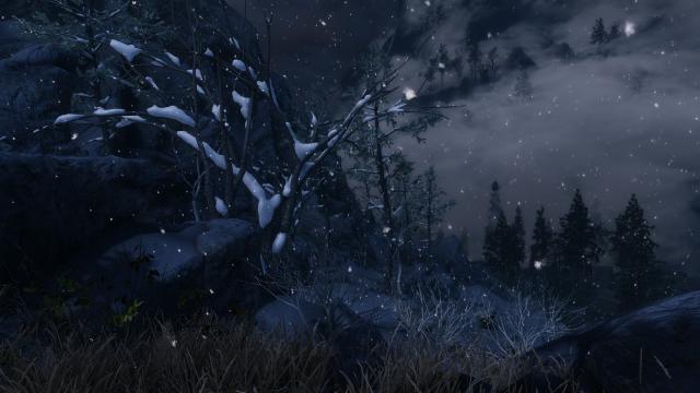 Ночь, снегопад