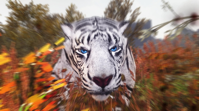 Не злая тигра