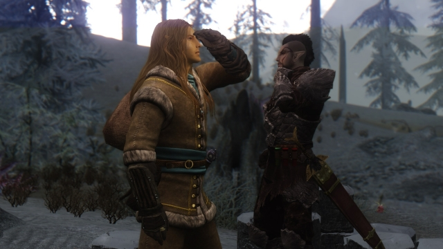 Elven Mercenaries
