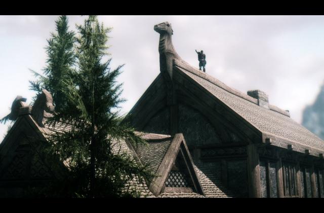 Данмер, который живет на крыше