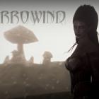 Skyrim с привкусом Morrowind