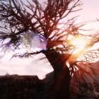 Skyrim Landscape
