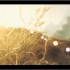 Осенние воспоминание