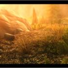 В желтом тумане