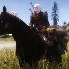 броня для лошадей на любой вкус)