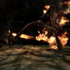 Огонь и Яд