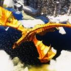 Полдень дракона