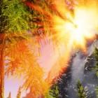Солнце и пейзажи