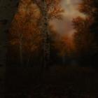 Пасмурные сумерки над лесами Рифта