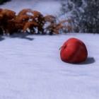 Сны на снегу