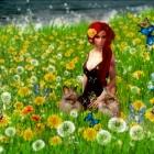 Amanda in Wonderland