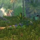 Тропический скайрим или полёт стрелы.