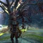 The Elder Scrolls V - Skyrim - Legendary Edition