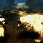 Опасности подводной охоты