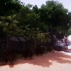 Тропический