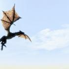 Вольный Дракон