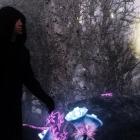 В волшебном лесу