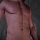 Dizona Body WIP