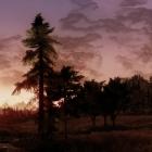 Insomnia CGI
