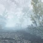 Туманное утро в Фальскаре