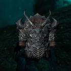 Фалмерская тяжолая броня