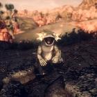Mojave Wasteland #2