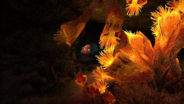 Коралловая пещера