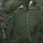 В лесах Валенвуда
