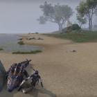 Фото с крокодилом