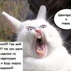 сам себя ваббаджекнул))))