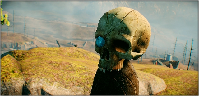 Окуляриумый череп