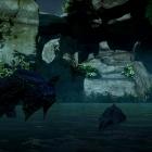 Wyvern & Dragon