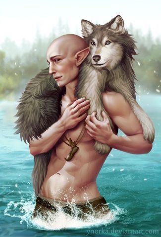 Solas with a wolf