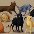 dragon Age 2 cats
