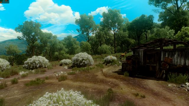 The Witcher 3 Screenshot 2019.09.18   23.12.30.61