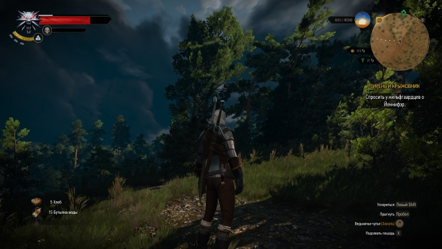 witcher3 - сильный ветер