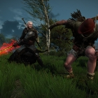 The Witcher 3: Ansel-3