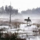 На болотах
