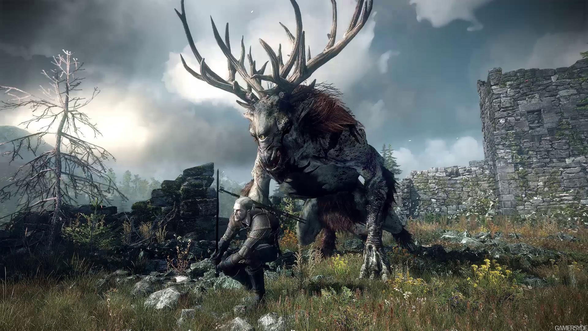pre_1375210492__image_the_witcher_3_wild
