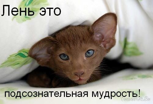 pre_1388764256__1244432560_s3img_13755849_1005_1.jpg