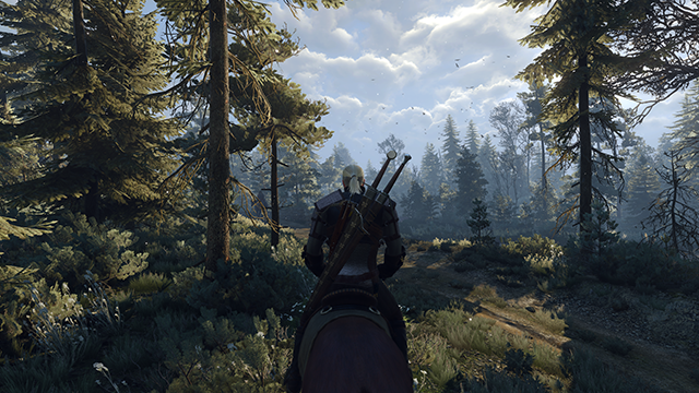 thumb_pre_1432399815__the-witcher-3-wild