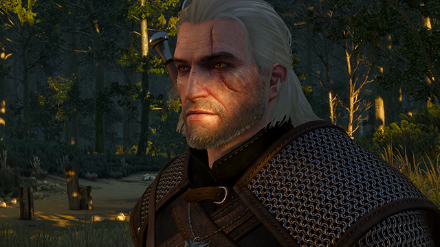 thumb_pre_1432400750__the-witcher-3-wild