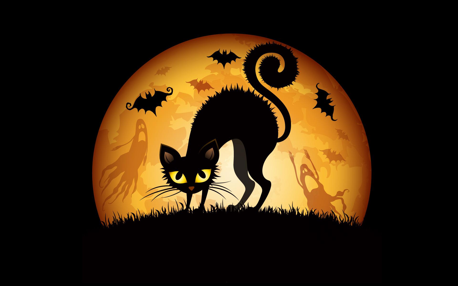 pre_1508963637__halloween-cat-63742048.jpg