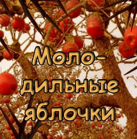pre_1509007262___.jpg