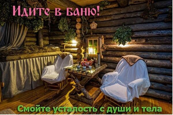 pre_1542965635_____.jpg