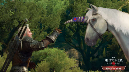 thumb_pre_1465063414__the_witcher_3_wild