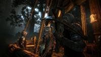 Witcher-2-Assassin-of-kings-8.jpg - Размер: 555,94К, Загружен: 299
